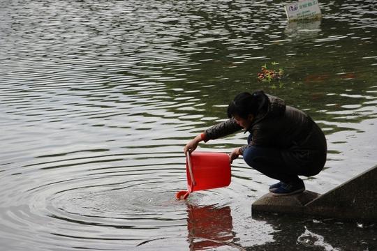 Hồ Thiền Quang, nơi được rất nhiều người dân lựa chọn thả cá chép