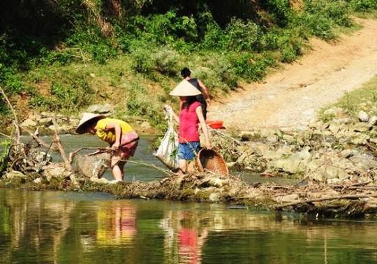 Cá chết nên có rất nhiều người dân địa phương ra sông đi vớt cá