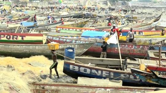 Cuộc sống của ngư dân Guinea bị ảnh hưởng nghiêm trọng vì tàu cá Trung Quốc vơ vét thủy sản gây thiệt hại nguồn cá và môi trường biển. Ảnh: BBC