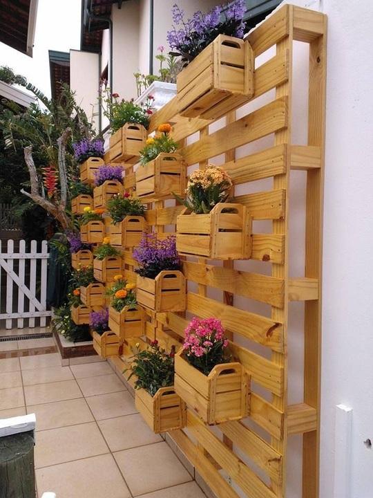 Một điều tuyệt vời là bên cạnh việc có thêm không gian để gieo trồng những loại rau củ thì bạn vẫn có thể tận dụng những thanh pallet tạo điểm nhấn cho không gian sống của gia đình.