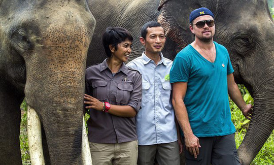 Leonardo DiCaprio tại Indonesia