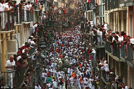 Các lễ hội bò rượt, bò chạy... thu hút đông người tham gia