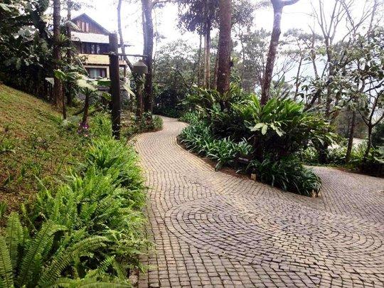 Các con đường vào được lát gạch quanh khu resort 4 sao cao cấp