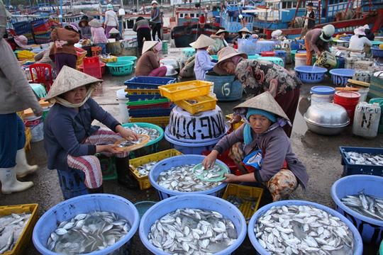 Những mẻ cá, tôm của chuyến biển đầu năm mới được ngư dân bày bán trên cảng biển.