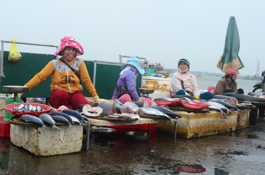 Nhiều loại cá đắt tiền được bày bán la liệt ở chợ Đồng Hới với giá rẻ, nhưng người dân đều tỏ ra dửng dưng khi đi qua các gian này