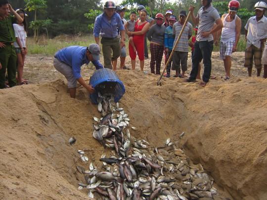 Lực lượng chức năng tỉnh Thừa Thiên - Huế tiêu hủy cá nuôi bị chết bất thường hôm 3-5 Ảnh: QUANG NHẬT