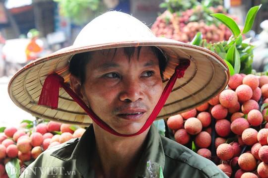 Nông dân Nguyễn Xuân Tiến ( xã Quý Sơn, huyện Lục Ngạn, Bắc Giang) tỏ ra ngán ngẩm khi mỗi lần bán vải lại bị các thương lái Trung Quốc ép giá.