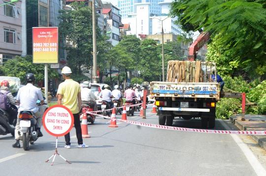 Đơn vị tỉa cành cây giăng dây dưới lòng đường đảm bảo an toàn cho người dân