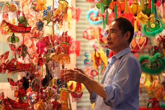 Lồng đèn được bày bán ở đây có vô vàn kiểu dáng, chất liệu. Chúng có thể được nhập về từ các chợ hoặc là hàng thủ công do chính những chủ cửa hàng ở đây làm ra