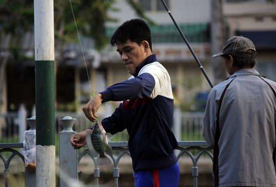 Những con cá rô, chép, trê liên tục được giật lên. Một cần thủ cho biết: Cá ở đây rất dễ ăn mồi, khoảng 3 giờ bắt 5,6 kg là chuyện thường.