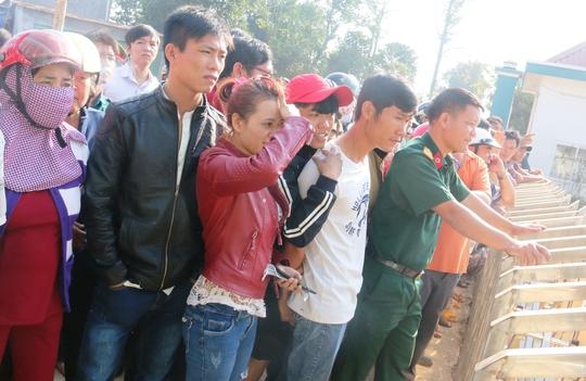 Hàng trăm người đứng ngoài theo dõi cơ quan chức năng bắn hạ trâu điên