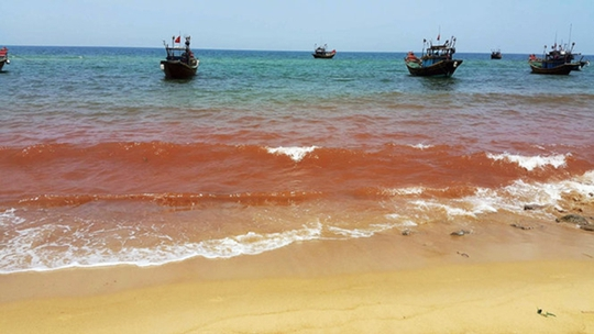Vệt nước màu đỏ đậm dài đến 1,5 km