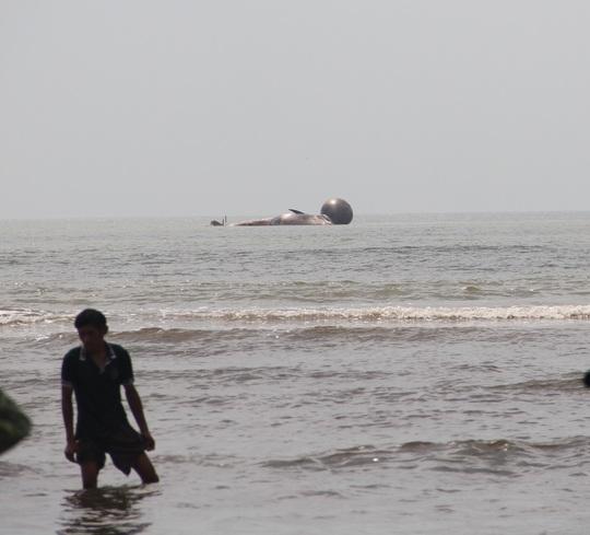 Xác cá được buộc cố định vào một phao hơi lớn