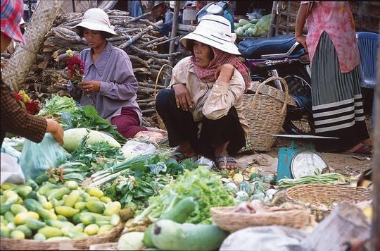 Chính phủ Campuchia đang khuyến khích sử dụng thuốc trừ sâu sinh học để đảm bảo chất lượng và sự an toàn của nông sản trong nước Ảnh: EJF