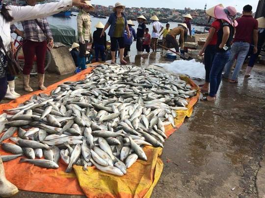 Cá lồng chết hàng loạt ở xã Nghi Sơn, huyện Tĩnh Gia, tỉnh Thanh Hóa