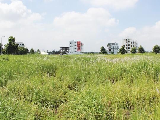 """Doanh nghiệp địa ốc hững hờ với nhiều khu """"đất vàng"""" được Thành phố tổ chức đấu giá. Ảnh: Gia Huy"""