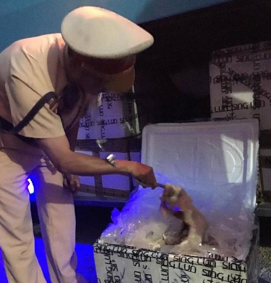 Sản phẩm động vật bốc mùi được giấu trong các thùng xốp