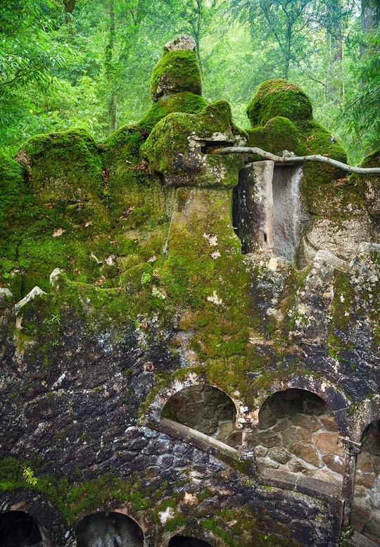 Từ trên cao nhìn xuống đáy giếng nhiều người sẽ bị sốc vì độ sâu