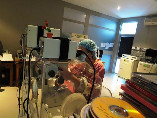 Thực hiện kỹ thuật thụ tinh trong ống nghiệm- bước cơ bản của mang thai hộ tại BV Từ Dũ