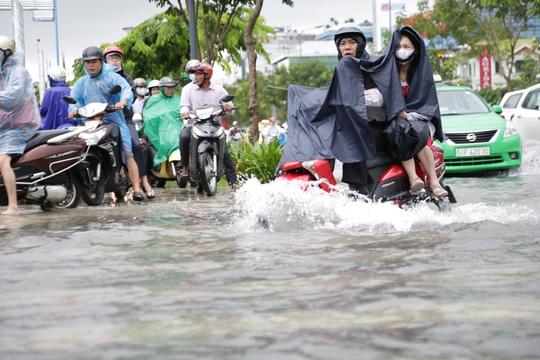 Đường Trường Sơn (quận Tân Bình) ra, vào sân bay Tân Sơn Nhất nhưng khi mưa xuống là ngập