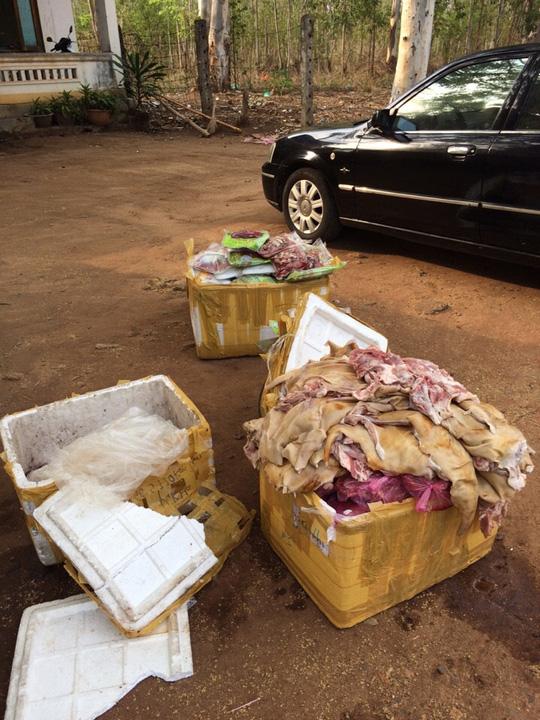 Số thịt thối được tài xế khái nhận chở thuê cho một người để chuẩn bị nấu trong đám cưới