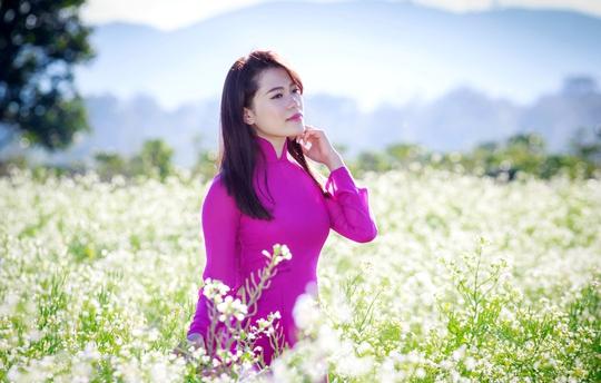 Ngay giữa mùa này trên cao nguyên Lâm Đồng loài hoa tam giác mạch đã bung nở làm xốn xang lòng người.