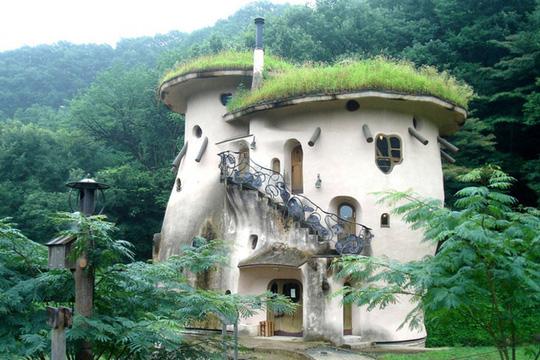 Ngôi nhà nằm không xa thủ đô Tokyo (Nhật) giống như trong chuyện cổ tích. Nhà có thiết kế dạng ống với cầu thang họa tiết hoa lá và mái cỏ xanh rờn.