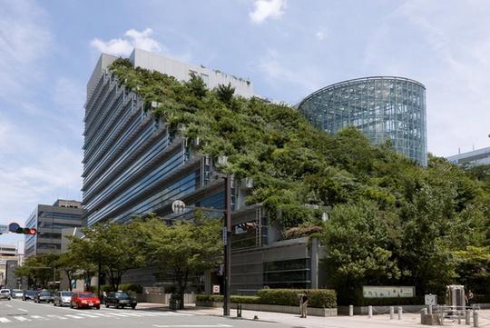 Trung tâm hội nghị quốc tế ở Fukuoka (Nhật) giống như một ngọn núi với thửa ruộng bậc thang trồng 35.000 cây thuộc 76 loại.