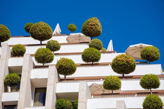 Không phủ kín cây nhưng khách sạn ở Israel đem lại cảm giác vui mắt, sinh động với hệ thống cây được tỉa vòm tròn như những chiếc kẹo ngộ nghĩnh.