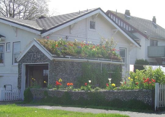 Nhiều công trình ở nước ngoài xây dạng mái dốc nên chủ nhà không đặt bồn cây mà trồng hoa trực tiếp trên mái.