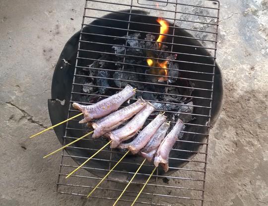 Ngon gì bằng cá bống dừa nướng muối ớt