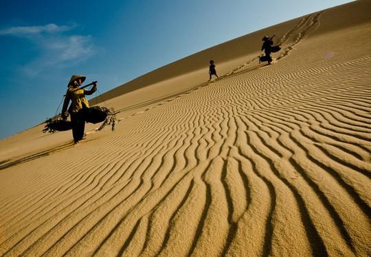 Sóng cát