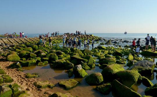 Bãi đá rêu xanh thu hút nhiều du khách