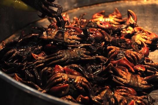 Chợ cá tươi rói ở Sài Gòn chỉ bán vào ban đêm