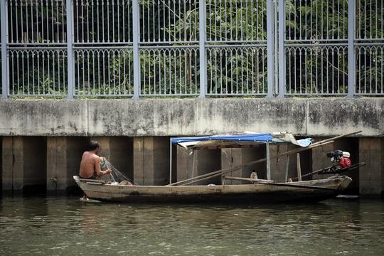 Nhiều người bắt cá chuyên nghiệp còn chèo đò dùng lưới dày, vợt săn bắt khiến cá không còn đường trốn.
