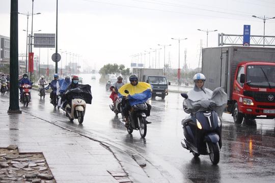 Cơn mưa kéo dài hơn nửa tiếng đồng hồ giải nhiệt cho thành phố sau một ngày nắng nóng.