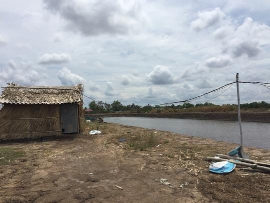 Tôm chết liên tục, nhiều ao tôm ở Cà Mau bị bỏ không