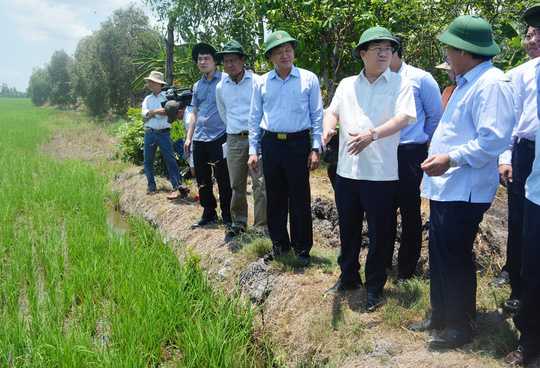 Phó Thủ tướng Trịnh Đình Dũng đi thực tế tại vùng trồng vụ lúa hè thu sớm ở xã Ninh Hòa, huyện Hồng Dân