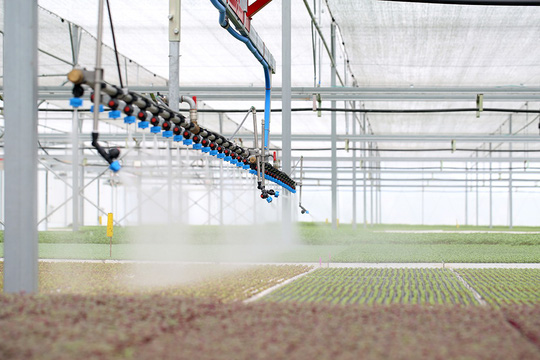 Công nghệ trồng rau nhà kính VinEco đang sử dụng là công nghệ tiên tiến, hàng đầu thế giới.