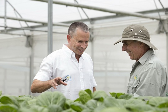 Các chuyên gia của TAP khẳng định những sản phẩm nông nghiệp giàu dinh dưỡng, an toàn của VinEco đủ tiêu chuẩn xuất khẩu quốc tế.