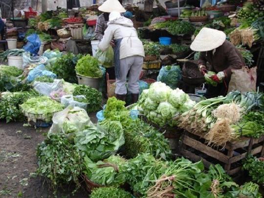 Theo kết quả giám sát có gần 4% mẫu rau chứa tồn dư thuốc bảo vệ thực vật vượt ngưỡng