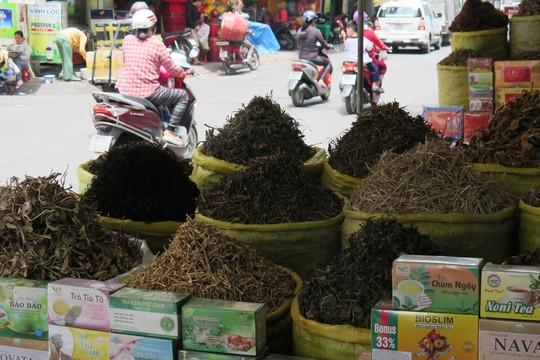Trong đông y, nguyên liệu thường dùng làm thuốc là thảo mộc, khoáng vật, động vậtẢnh: Hoàng Triều