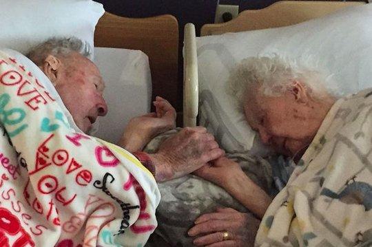 Cụ ông nắm chặt tay vợ trên giường bệnh. Ảnh: Mirror