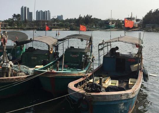Tàu cá neo tại cảng Đàm Môn trên đảo Hải Nam - Trung Quốc. Ảnh: REUTERS