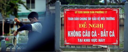 Mặc dù hai bên bờ sông Nhiêu Lộc - Thị Nghè có nhiều biển báo cấm câu cá nhưng nhiều người vẫn thản nhiên tụ tập câu cá để ăn và bán.