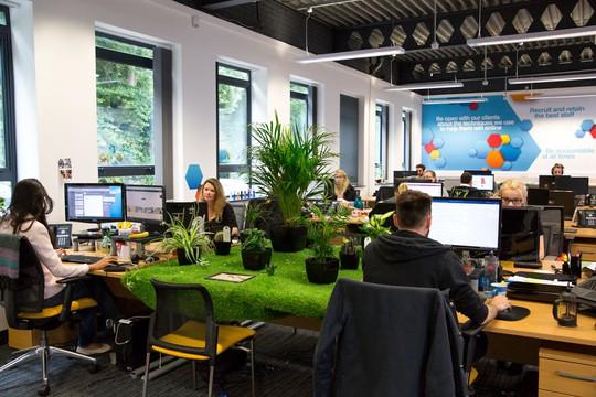 Cây xanh trong văn phòng còn góp phần cải thiện chất lượng không khí, giúp mọi người làm việc sáng tạo hơn.