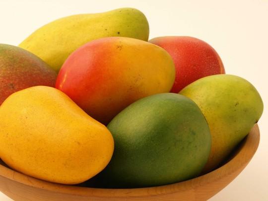 Xoài được mệnh danh là vua của các loại trái cây ở một số nơi trên thế giới.