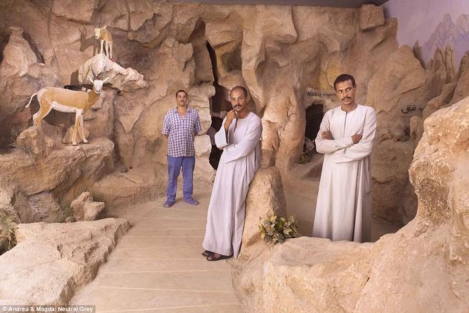 Vườn bách thảo Sharm el Sheikh không mở cửa cho công chúng dù vẫn được duy trì