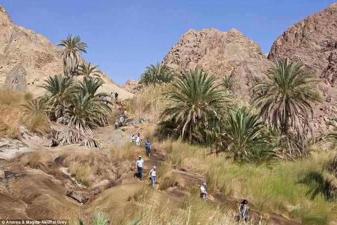 Một nhóm du khách Nga hiếm hoi tham quan ốc đảo Wadi Gunaim ở khu vực Dahab