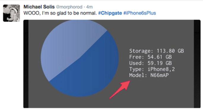 Một người dùng thể hiện sự hân hoan trên Twitter khi biết chiếc iPhone của anh dùng chip do TSMC sản xuất. Người dùng có thể cài ứng dụng Lirum Device Info Life để kiểm tra. Bản dùng chip TSMC có ký hiệu N66MAP hoặc N71MAP trong khi bản dùng chip Samsung ký hiệu N66AP và N71AP.